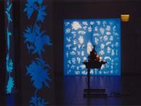 Cécile Ravel - installation Jardin de Jessé