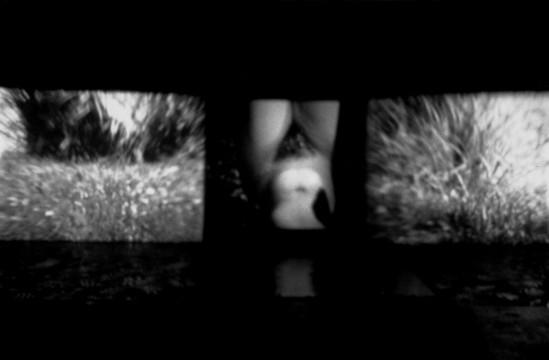 Cécile Ravel - installation Suzanne au bain