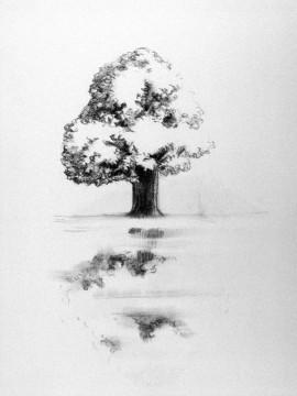 Cécile Ravel - dessin Arbre #1
