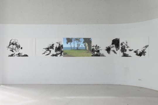 Cécile Ravel - Installation Panorama réunionnais