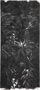 Cécile Ravel - dessin Ravine noire #1
