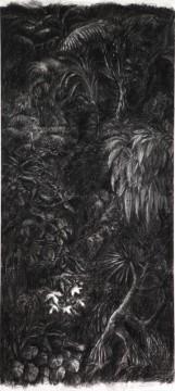 Cécile Ravel - dessin Ravine noire #2