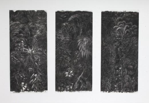 Cécile Ravel - dessin Ravines noires