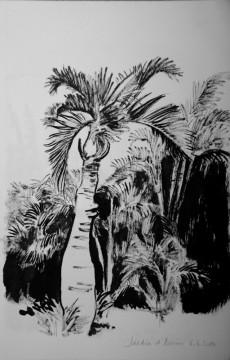 Cécile Ravel - dessin Impression #1 - La Réunion