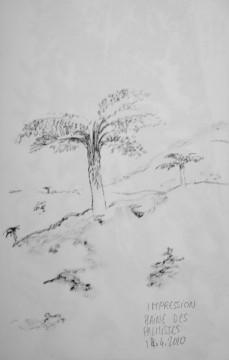 Cécile Ravel - dessin Impression #6