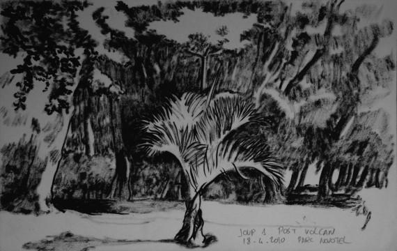 Cécile Ravel - dessin Impression #11