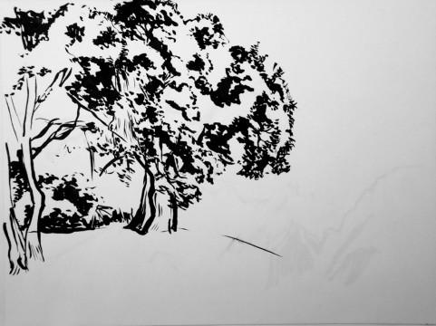 Cécile Ravel - dessin Impression #15