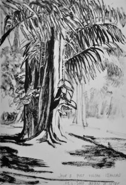 Cécile Ravel - dessin Impression #17 - La Réunion