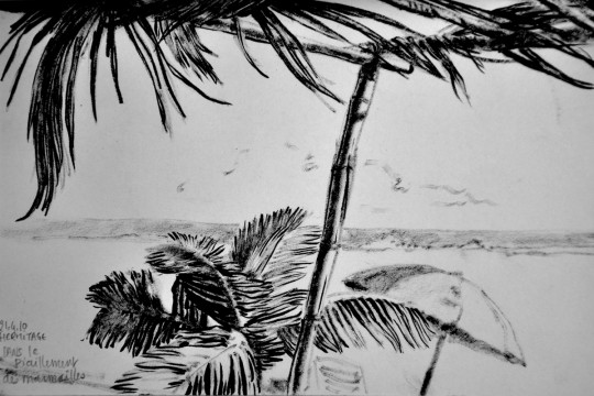 Cécile Ravel - dessin Impression #20 - La Réunion