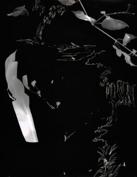 Cécile Ravel - rayogramme - Improvisation empreinte #6