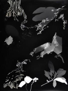 Cécile Ravel - rayogramme - Improvisation empreinte #9