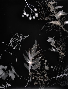 Cécile Ravel - rayogramme - Improvisation empreinte #15