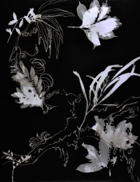 Cécile Ravel - rayogramme - Improvisation empreinte #17