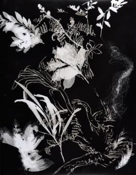 Cécile Ravel - rayogramme - Improvisation empreinte #19
