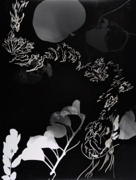 Cécile Ravel - rayogramme - Improvisation empreinte #22