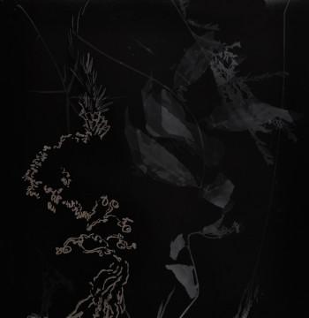 Cécile Ravel - rayogramme - Improvisation empreinte #23