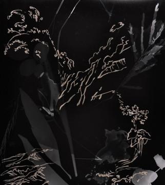 Cécile Ravel - rayogramme - Improvisation empreinte #27