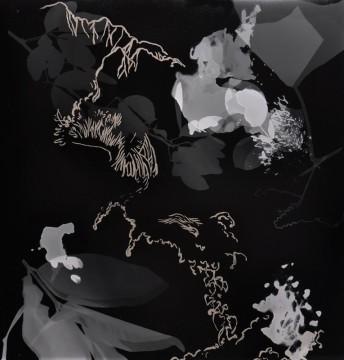 Cécile Ravel - rayogramme - Improvisation empreinte #29