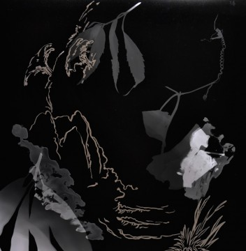 Cécile Ravel - rayogramme - Improvisation empreinte #31