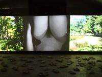 Actéon -Cécile Ravel - installation filmique